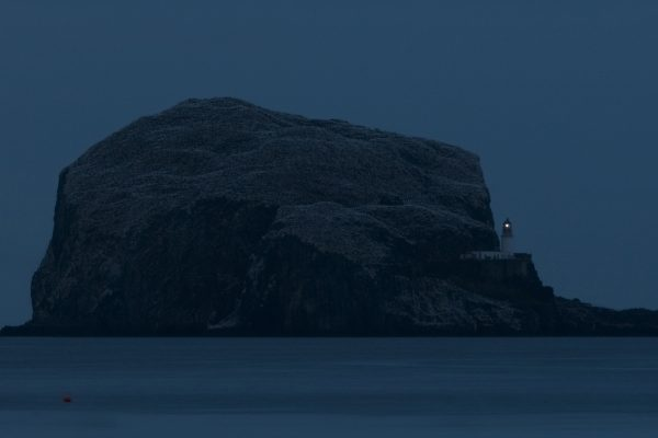 Bass rock at night